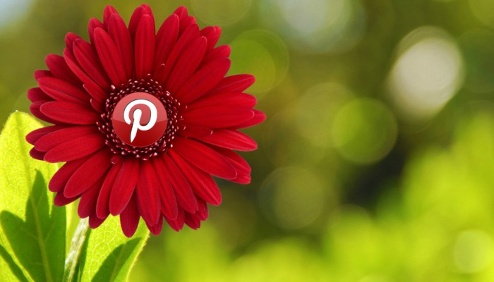 Are you Pinterest-ed in building your brand?